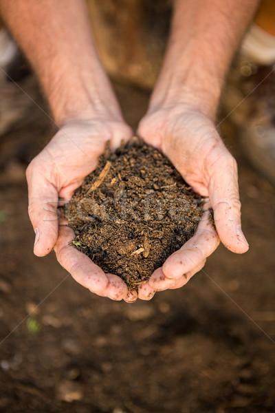 садовник грязи рук саду мужчины сообщество Сток-фото © wavebreak_media