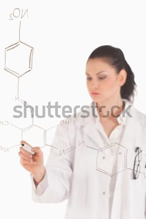 ученого Дать формула лаборатория служба Сток-фото © wavebreak_media