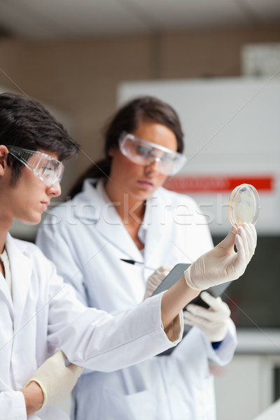 Portrait of science students looking at Petri dish in a laboratory Stock photo © wavebreak_media