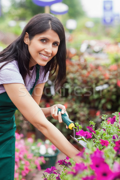 Fleuriste fleurs travail travailleur couleur Photo stock © wavebreak_media
