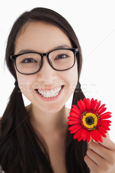 Happy woman holding a flower with glasses and pigtails Stock photo © wavebreak_media
