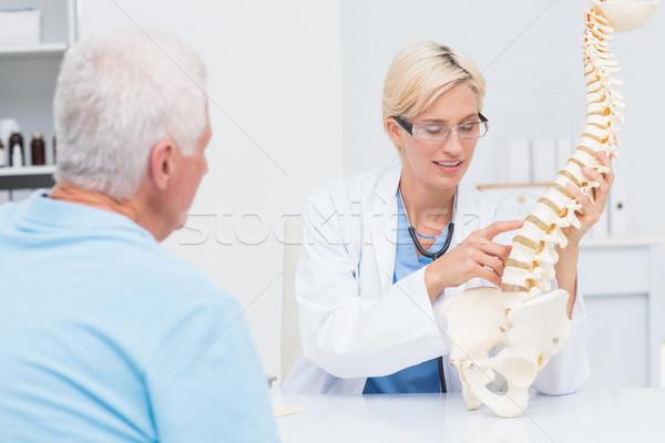 Orvos anatómiai gerincoszlop idős beteg női Stock fotó © wavebreak_media