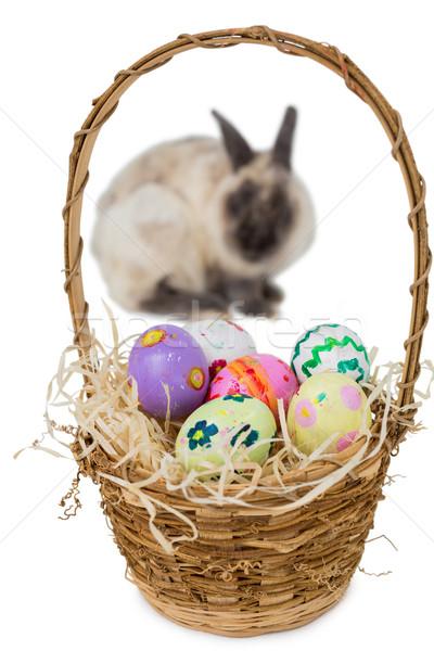корзины пасхальных яиц кролик белый Пасху шоколадом Сток-фото © wavebreak_media
