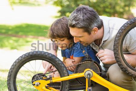 Father and son repairing bike Stock photo © wavebreak_media