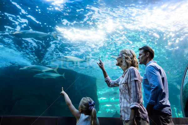 Family pointing a fish in a tank Stock photo © wavebreak_media