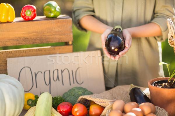 Femme mains aubergine vue Photo stock © wavebreak_media