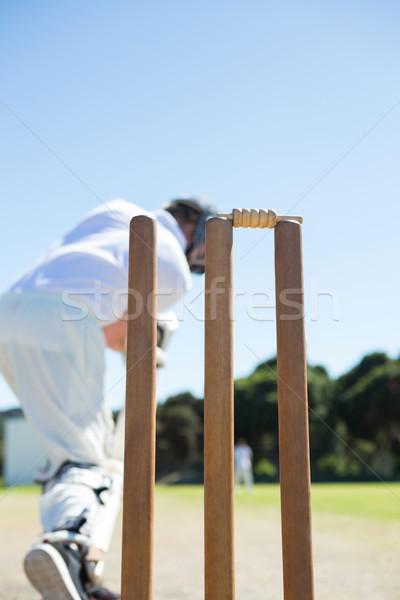 Close up of stump by batsman standing on field Stock photo © wavebreak_media