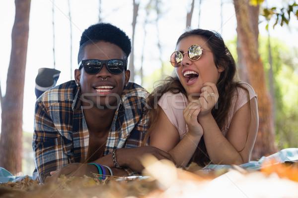 çift birlikte battaniye park kız Stok fotoğraf © wavebreak_media