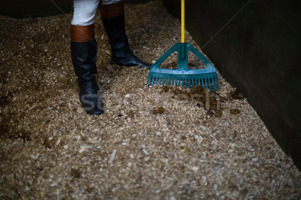 Man using broom to clean the stable Stock photo © wavebreak_media
