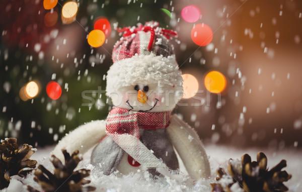 Boneco de neve pinho cone neve natal tempo Foto stock © wavebreak_media
