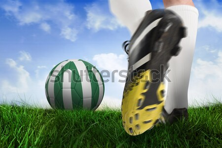 Black and white leather football against close-up of grass mat Stock photo © wavebreak_media