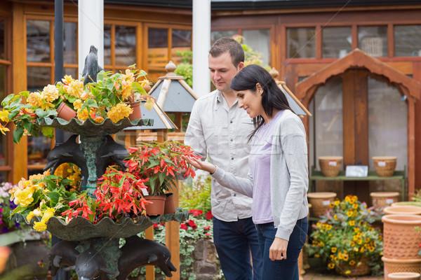 Boldog pár néz piros növény kert Stock fotó © wavebreak_media