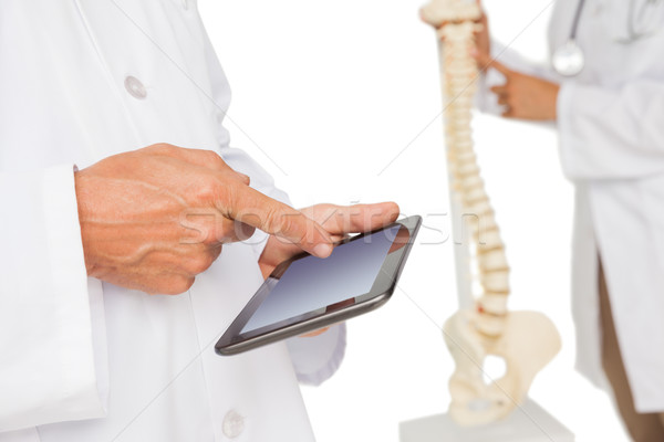 Mid section of doctors with digital table and skeleton model Stock photo © wavebreak_media