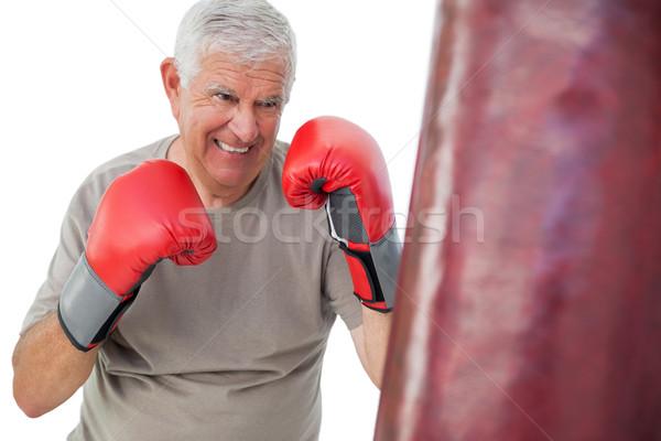портрет определенный старший Боксер белый рук Сток-фото © wavebreak_media