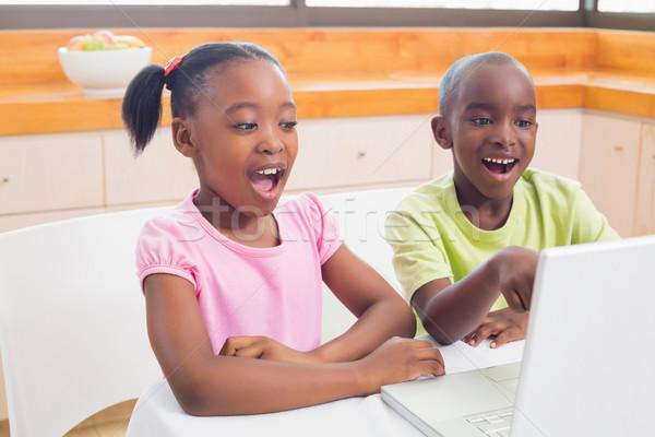 Aranyos testvérek laptopot használ együtt otthon konyha Stock fotó © wavebreak_media