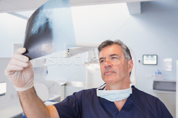 Serious dentist examining a x-ray  Stock photo © wavebreak_media