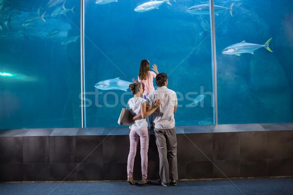 Mutlu aile bakıyor balık tank akvaryum sevmek Stok fotoğraf © wavebreak_media