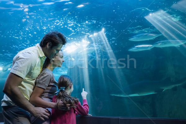 Gelukkig gezin naar tank aquarium man vis Stockfoto © wavebreak_media