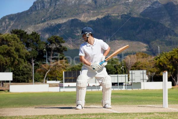 играет крикет области горные человека Сток-фото © wavebreak_media