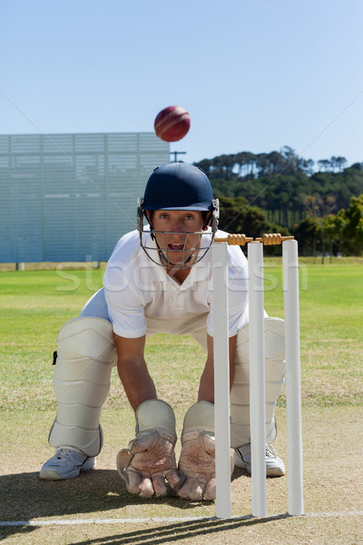 Wicketkeeper looking at ball crouching behind stumps on field Stock photo © wavebreak_media