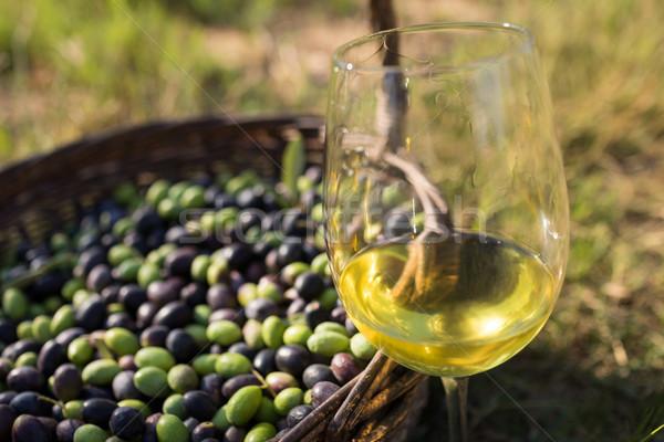 Olive vetro vino erba natura Foto d'archivio © wavebreak_media