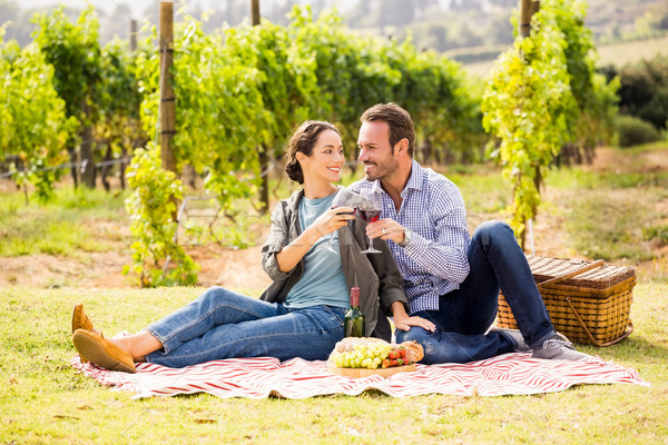 Stock photo: Couple toasting wineglasses at lawn