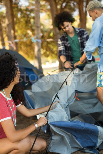 Young woman with male friends setting up tent Stock photo © wavebreak_media