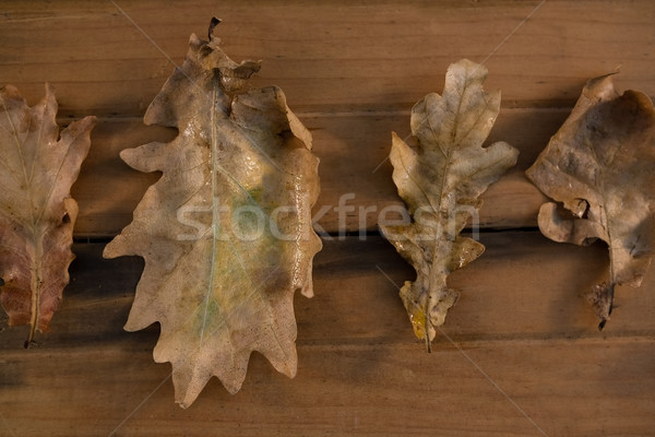Overhead view of dry leaves on wooden table Stock photo © wavebreak_media