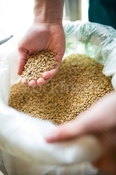 Tonen brouwerij fabriek hand industrie Stockfoto © wavebreak_media
