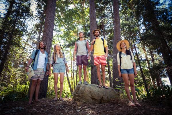 Csoport barátok áll együtt erdő mosolyog Stock fotó © wavebreak_media