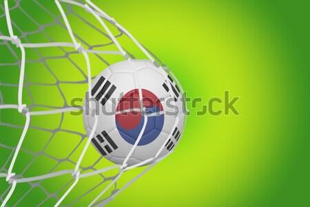 サッカー 韓国 色 計画 サッカー ストックフォト © wavebreak_media