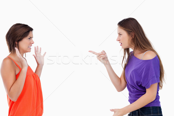 Teenager claiming her innocence by raising her hands while being accused by a friend Stock photo © wavebreak_media