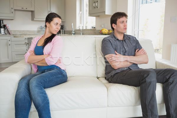 два друзей сидят диване гостиной Сток-фото © wavebreak_media