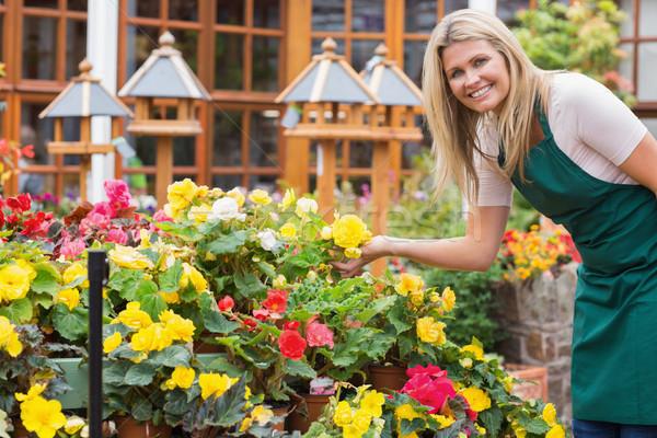 庭園 センター ワーカー 笑みを浮かべて 黄色の花 ストックフォト © wavebreak_media