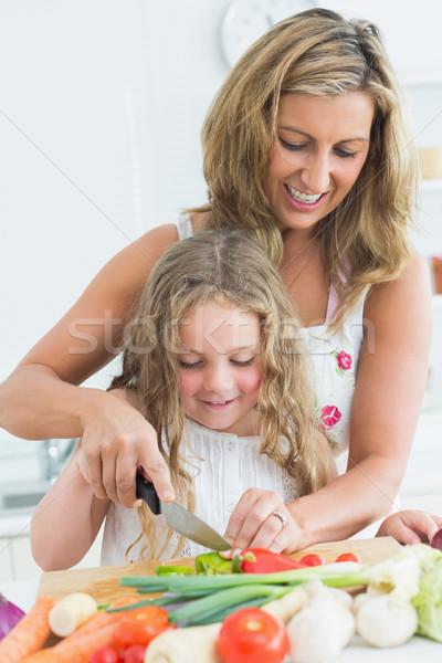 улыбаясь матери преподавания дочь различный Сток-фото © wavebreak_media