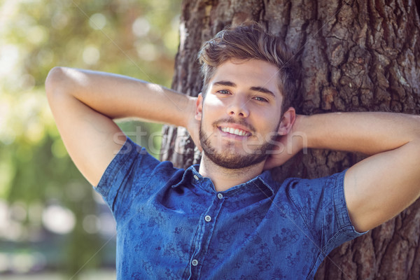 Bonito sorridente câmera árvore homem Foto stock © wavebreak_media