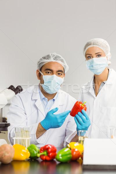 Food scientists looking at a pepper Stock photo © wavebreak_media