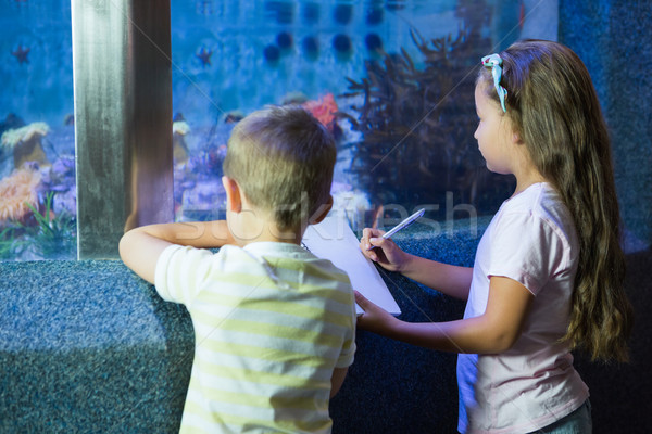 Cute siblings looking at fish tank Stock photo © wavebreak_media