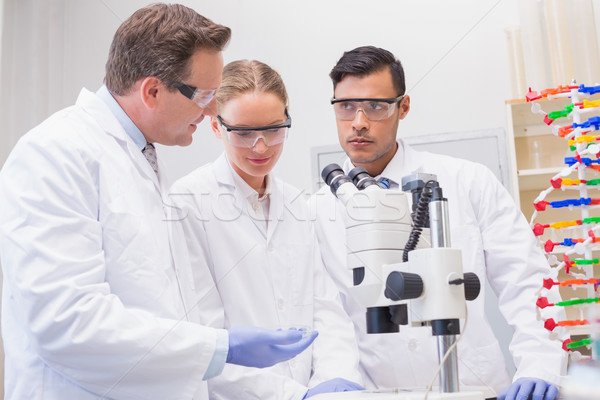 Scientists working attentively with microscope Stock photo © wavebreak_media