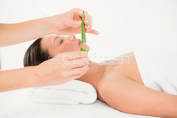 Stock photo: Attractive young woman receiving aloe vera massage