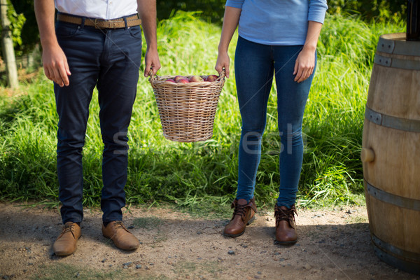 Low section of couple holding fruits in wicker basket at farm Stock photo © wavebreak_media