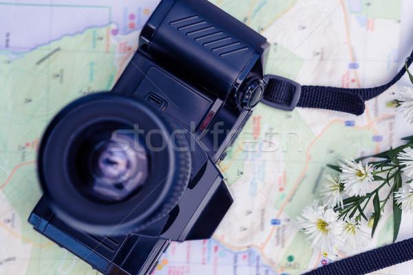Directamente tiro cámara digital mapa flores Foto stock © wavebreak_media