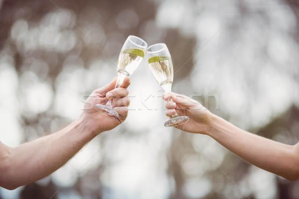 Couple toasting with champagne Stock photo © wavebreak_media