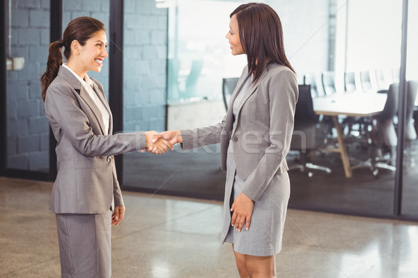 Mujer de negocios apretón de manos colega oficina negocios ejecutivo Foto stock © wavebreak_media