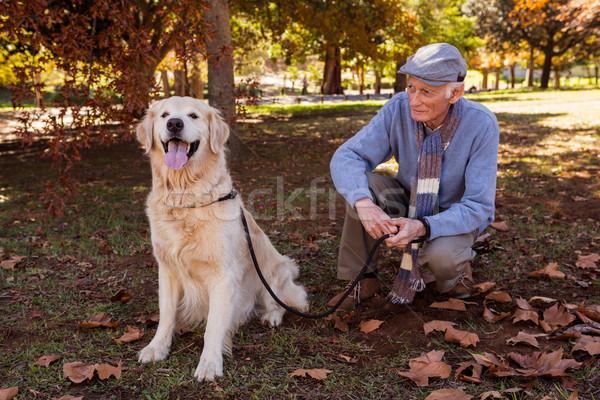 Ouderen man naar huisdier hond park Stockfoto © wavebreak_media