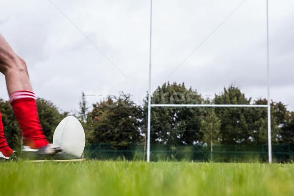 ラグビー プレーヤー ボール 公園 男 ストックフォト © wavebreak_media