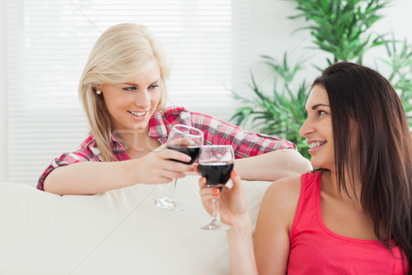 Women sitting on the couch drinking wine together at home Stock photo © wavebreak_media