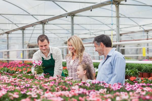 Famille fleur employé jardin centre Photo stock © wavebreak_media