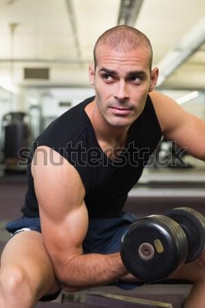 Fitt férfi emel súlyzók ül pad Stock fotó © wavebreak_media
