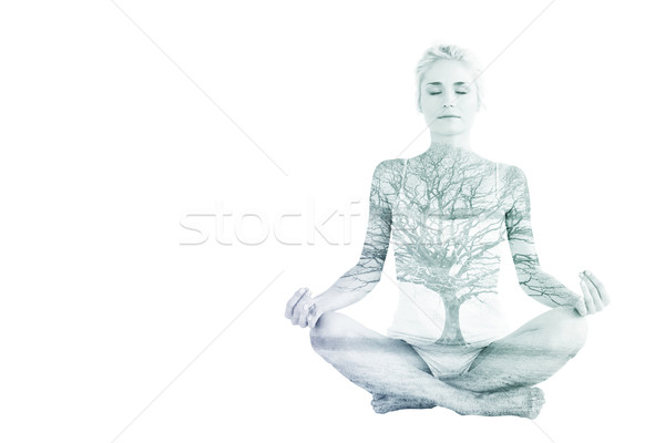Composite image of toned young woman sitting in lotus pose with  Stock photo © wavebreak_media